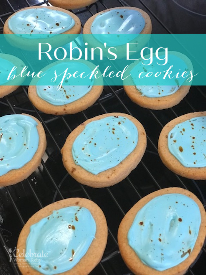Robin's egg blue speckled cookies