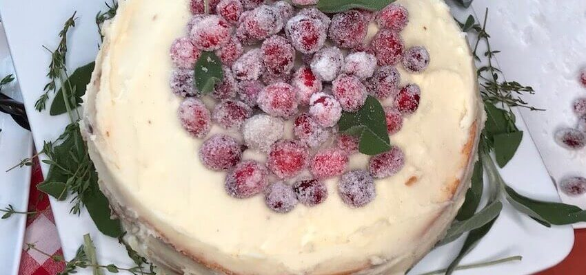 Candied Cranberries White Cake Holiday Recipe for Unforgettable Memories