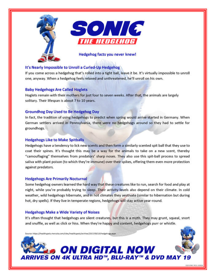 Sonic the Hedgehog facts printable