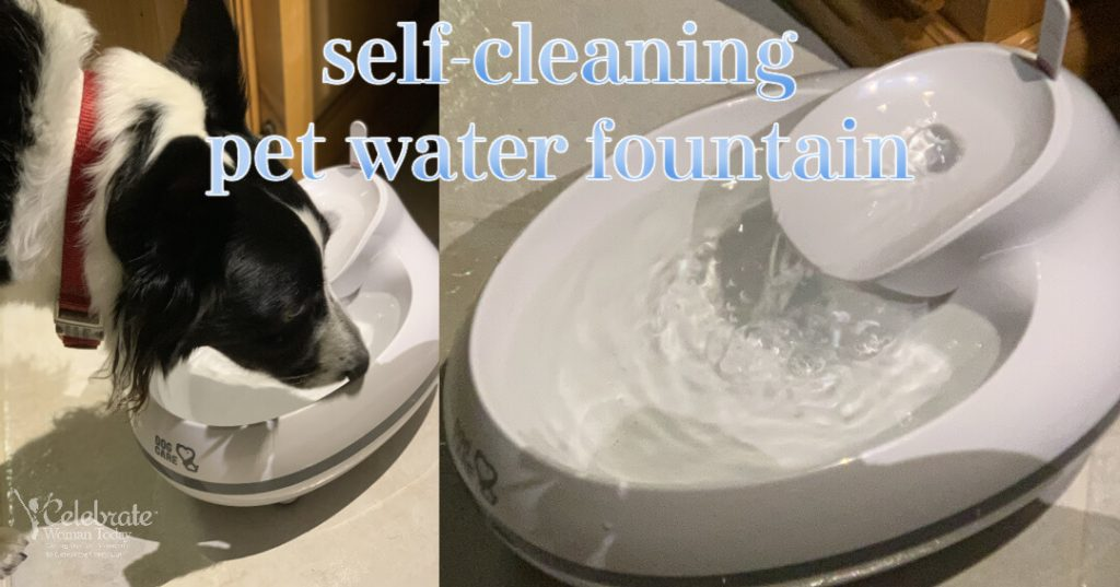 Indoor water fountain for pets